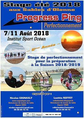 Affiche Progress Ping 2018