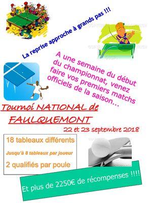 Tournoi National 2018 de Faulquemont (57)