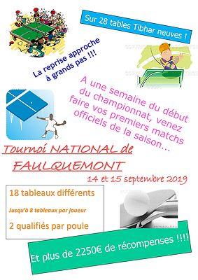 Tournoi National 2019 de Faulquemont (57)